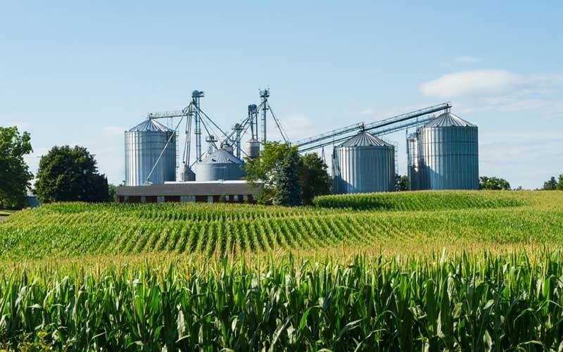 imagem-agroindustria