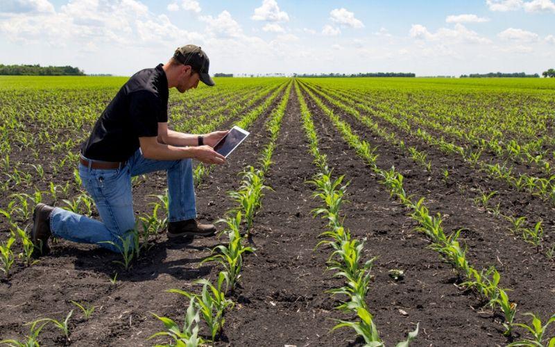 Agronegócio exporta US$ 96,8 bilhões em 2019