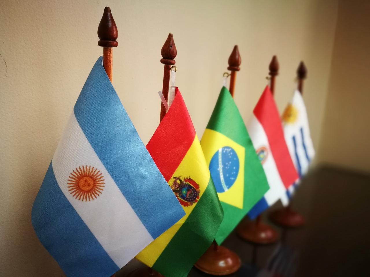 CEO do Grupo VMX Carlos Cesar Floriano vê positiva a cooperação entre Brasil e Argentina no setor agropecuário