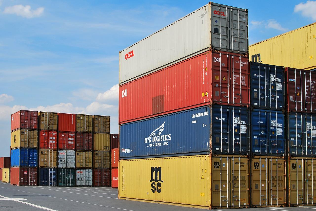 Carlos Cesar Floriano explica novo processo de importação