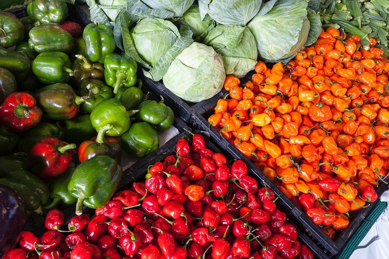Produção agropecuária estimada para 2020