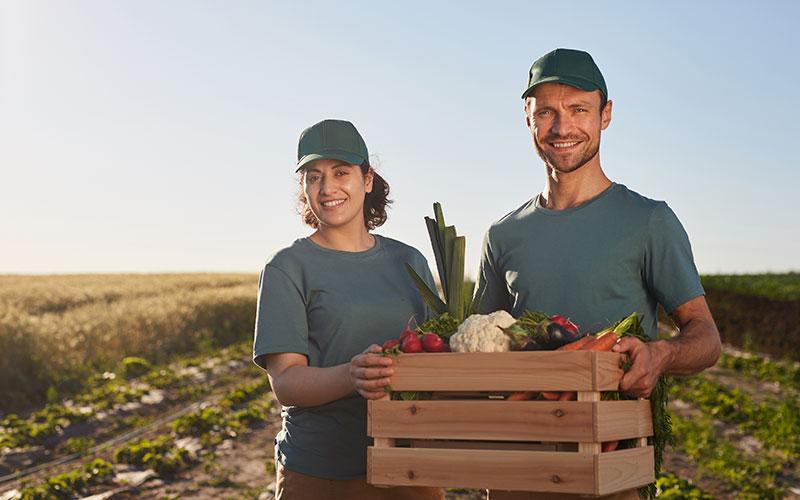 produtores rurais contrataram bilhões em credito