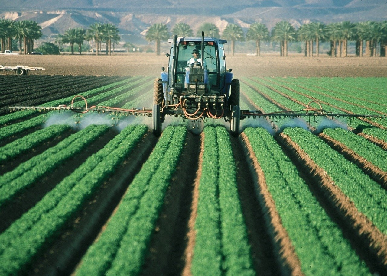 exportações do Agro em maio