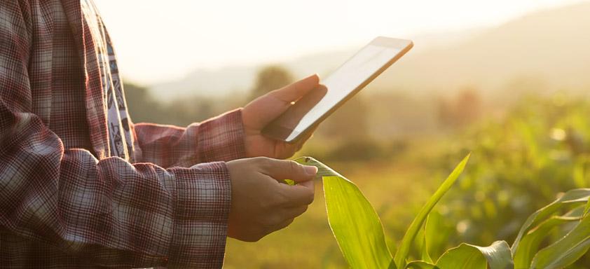 Carlos César Floriano comenta agricultura digital