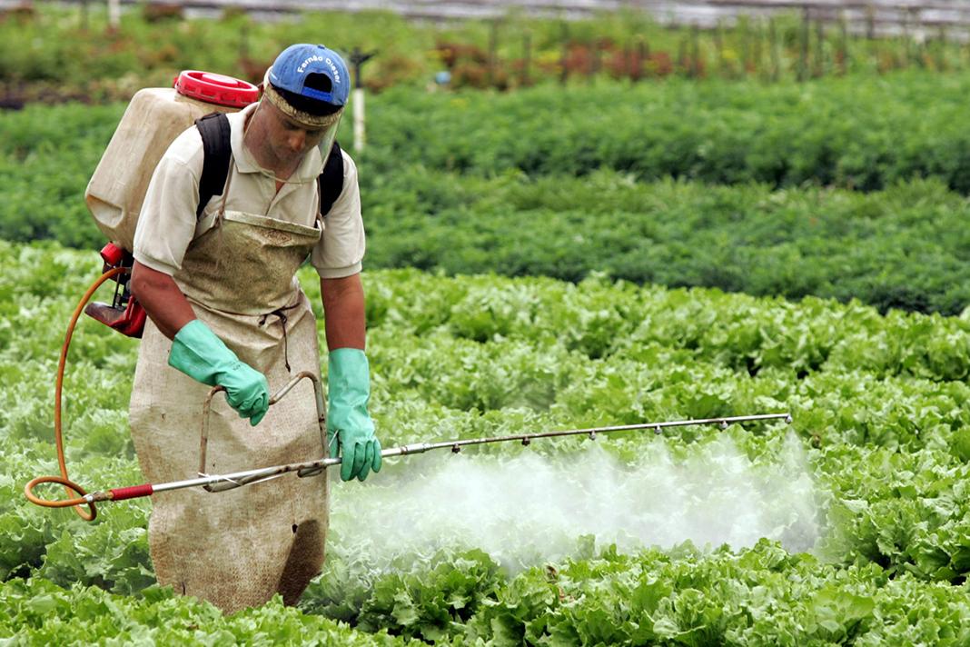 Carlos César Floriano explica defensivos agrícolas