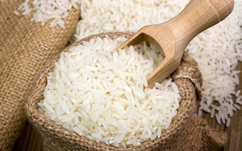 Carlos César Floriano explica estímulos à produção de arroz