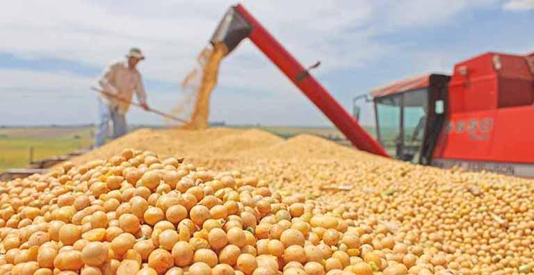 Carlos César Floriano destaca produção de grãos